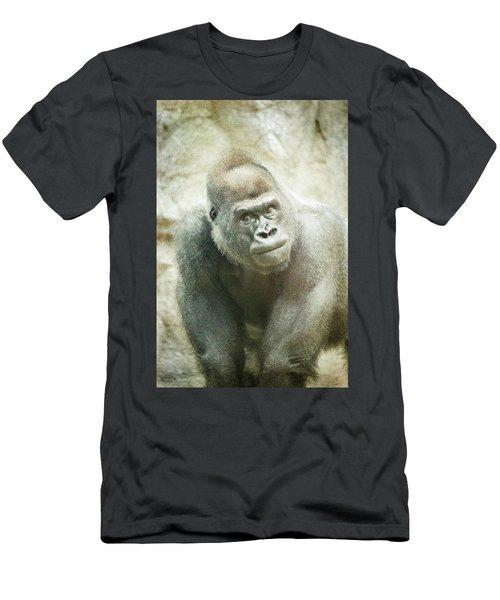 Silver Back Men's T-Shirt (Athletic Fit)