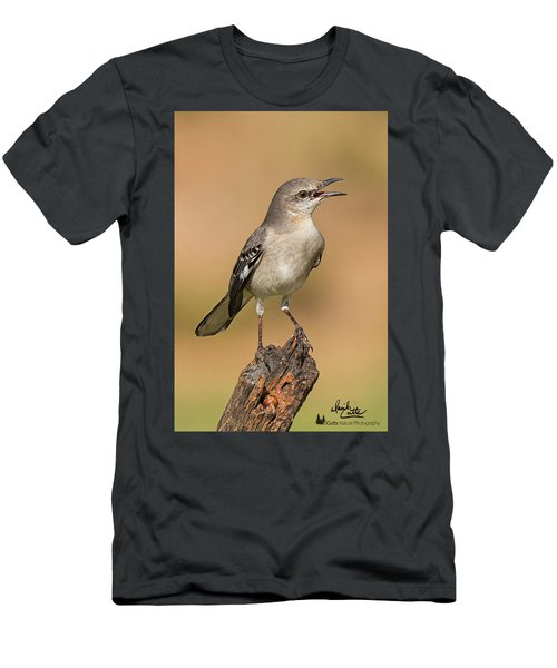 Singing Mockingbird Men's T-Shirt (Athletic Fit)
