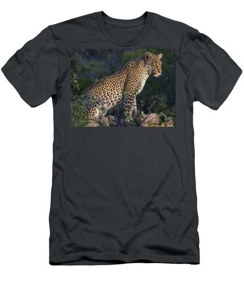 Sitting Leopard Men's T-Shirt (Athletic Fit)