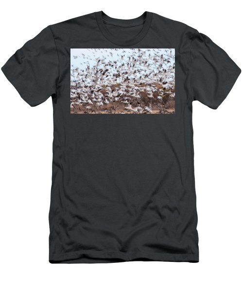 Snow Geese Chaos Men's T-Shirt (Athletic Fit)