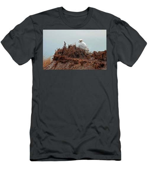 Snowy Owl In The Dunes Men's T-Shirt (Athletic Fit)