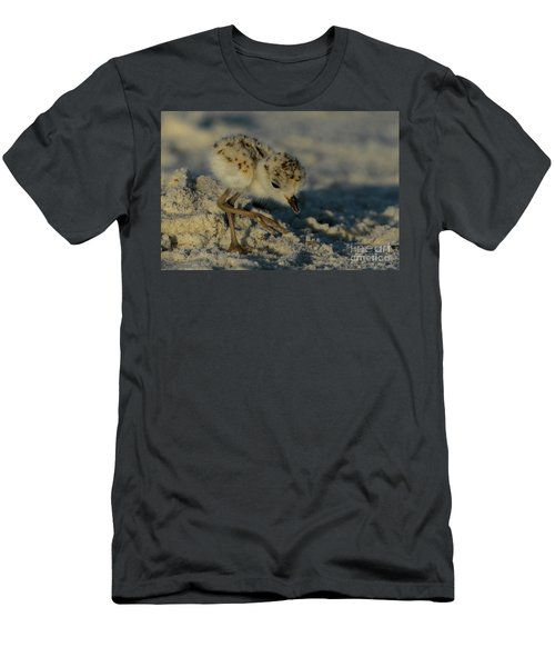 Snowy Plover On The Hunt Men's T-Shirt (Athletic Fit)