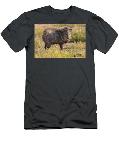 Solo Javelina Men's T-Shirt (Athletic Fit)