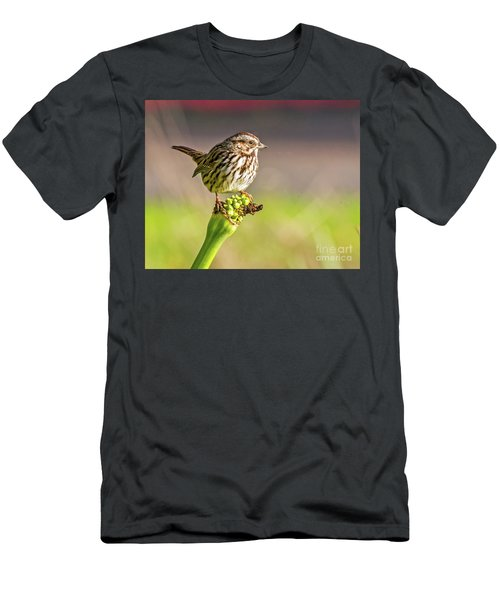 Songster Perching Men's T-Shirt (Athletic Fit)