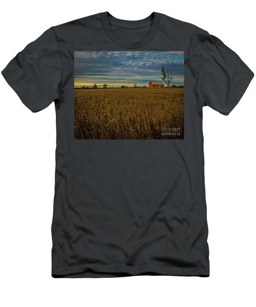 Soybean Sunset Men's T-Shirt (Athletic Fit)