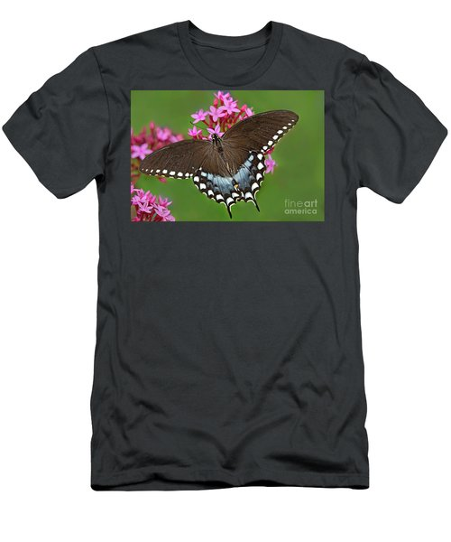Spicebush Swallowtail Papilio Trollus Men's T-Shirt (Athletic Fit)