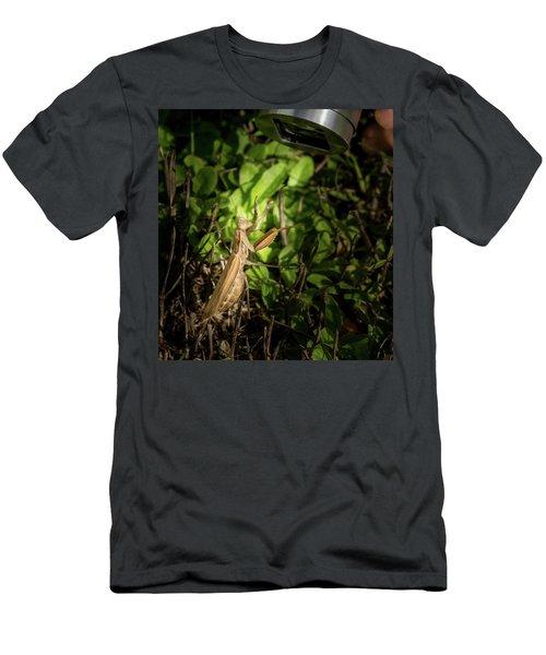 Spotlight On Mantis Men's T-Shirt (Athletic Fit)