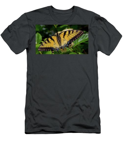 Spread Your Wings Men's T-Shirt (Athletic Fit)