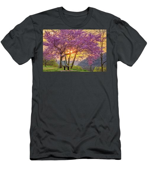 Spring Bench In Beaver 2 Men's T-Shirt (Athletic Fit)
