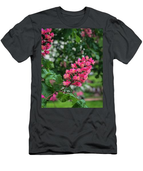 Spring Blossoms Men's T-Shirt (Athletic Fit)