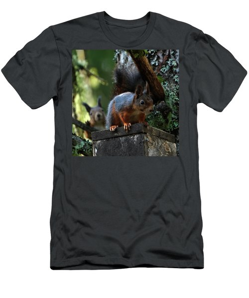 Squirrels Men's T-Shirt (Athletic Fit)