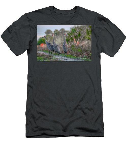 Standing Sandhills Men's T-Shirt (Athletic Fit)