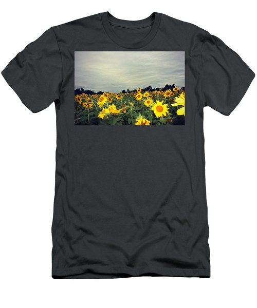 Sunflower Fields Men's T-Shirt (Athletic Fit)
