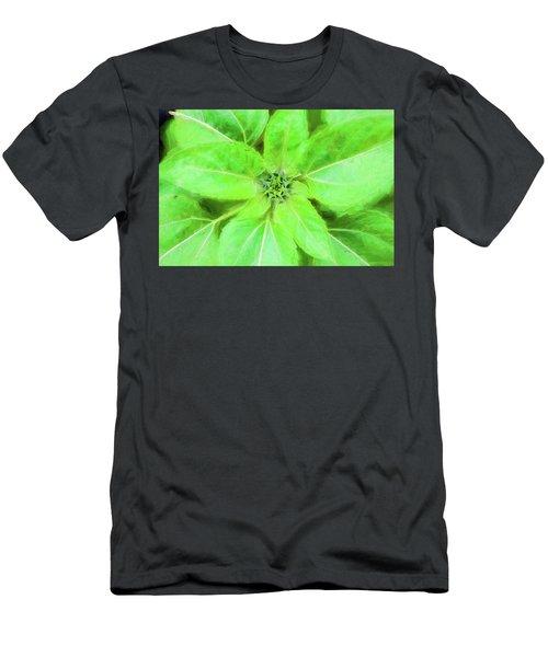 Sunflowers Helianthus 011 Men's T-Shirt (Athletic Fit)