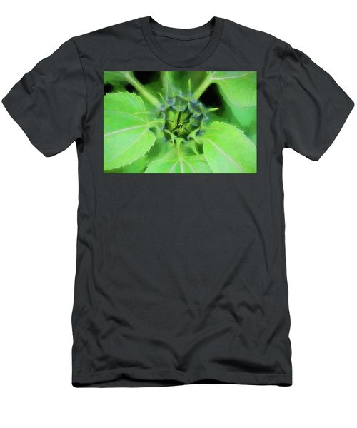 Sunflowers  Helianthus 022 Men's T-Shirt (Athletic Fit)