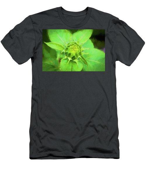 Sunflowers  Helianthus 039 Men's T-Shirt (Athletic Fit)