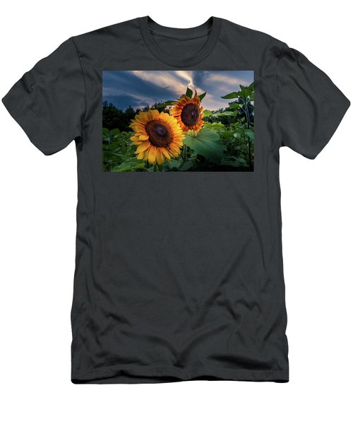 Sunflowers In Evening Men's T-Shirt (Athletic Fit)