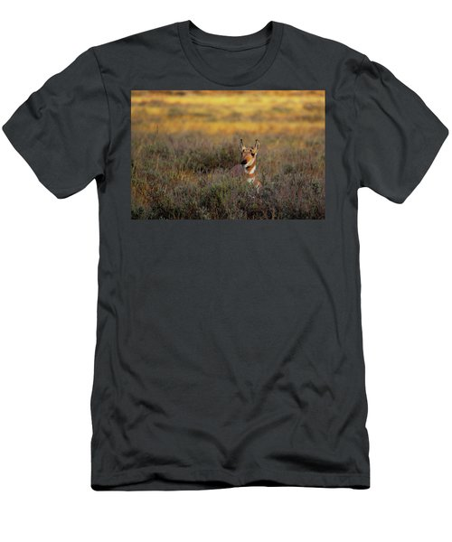Men's T-Shirt (Athletic Fit) featuring the photograph Sunset Pronghorn by Pete Federico