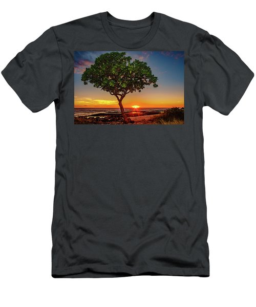 Sunset Tree Men's T-Shirt (Athletic Fit)