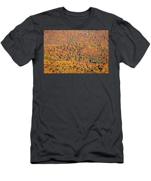 Sweeping Beauty Men's T-Shirt (Athletic Fit)