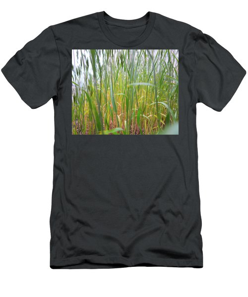 Men's T-Shirt (Athletic Fit) featuring the photograph Tall Grass In Herat by SR Green