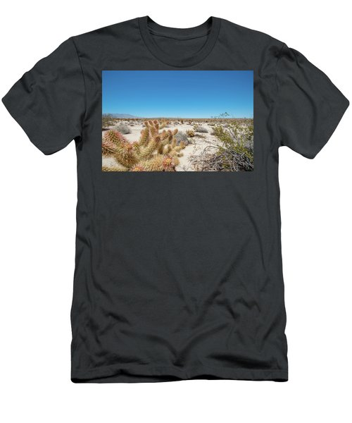Teddy Bear Cactus Men's T-Shirt (Athletic Fit)