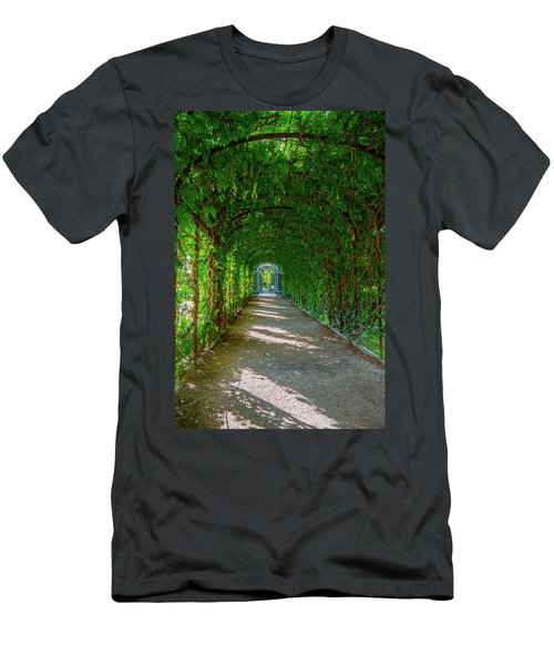 The Alley Of The Ivy Men's T-Shirt (Athletic Fit)