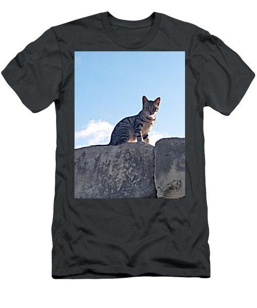 The Cat Men's T-Shirt (Athletic Fit)
