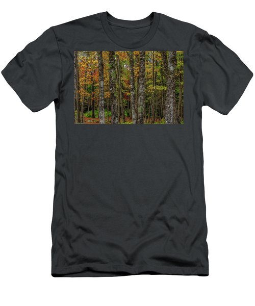 The Fall Woods Men's T-Shirt (Athletic Fit)