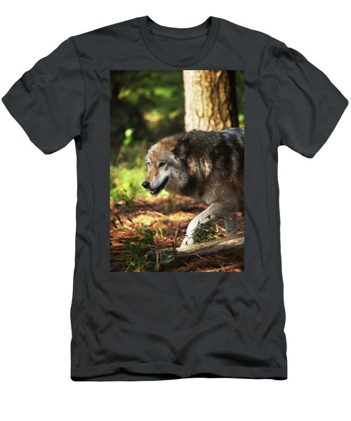 The Gray Wolf Men's T-Shirt (Athletic Fit)