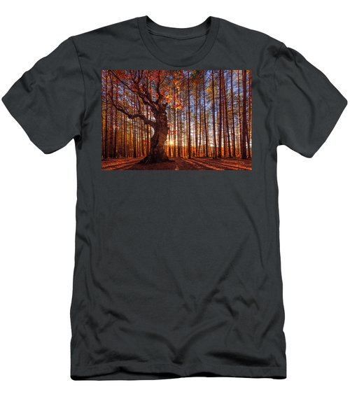The King Of The Trees Men's T-Shirt (Athletic Fit)