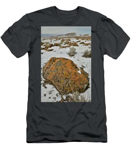 The Lichen Covered Boulders Of The Book Cliffs Men's T-Shirt (Athletic Fit)