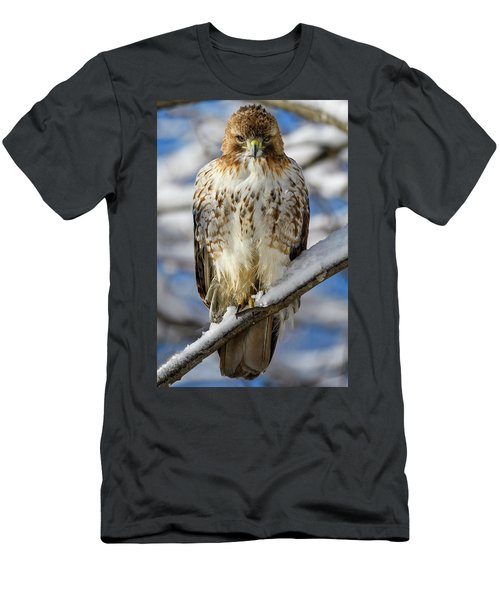 Men's T-Shirt (Athletic Fit) featuring the photograph The Look, Red Tailed Hawk 1 by Michael Hubley