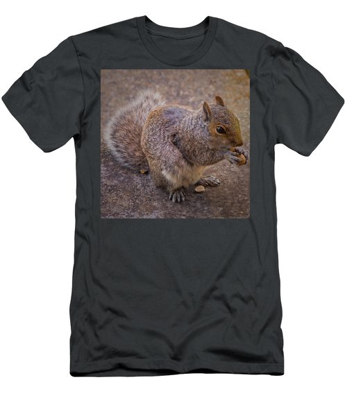 The Squirrel - Cornwall Men's T-Shirt (Athletic Fit)