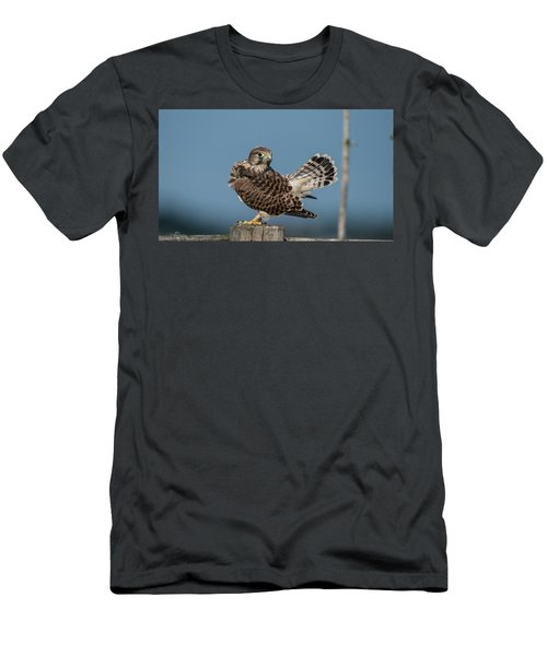 The Young Kestrel's Tail In The Air Men's T-Shirt (Athletic Fit)