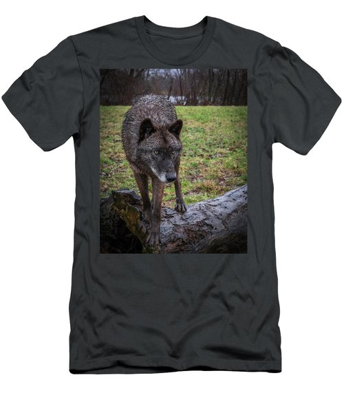 This Is My Log Men's T-Shirt (Athletic Fit)