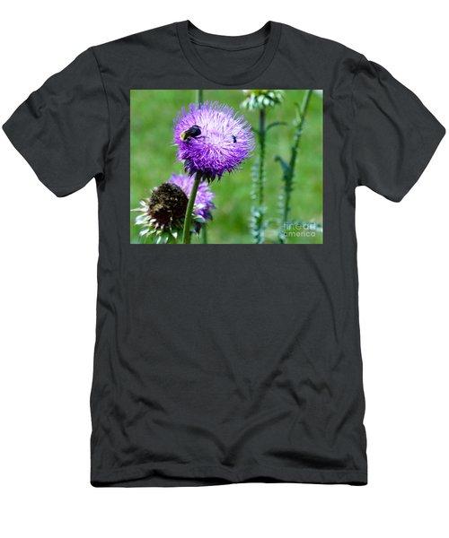 Thistle Visitors Men's T-Shirt (Athletic Fit)