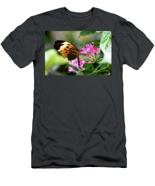 Tiger Longwing Butterfly Drinking Nectar  Men's T-Shirt (Athletic Fit)