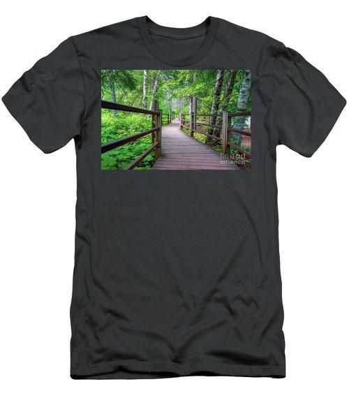 Trail At Gooseberry Falls Men's T-Shirt (Athletic Fit)