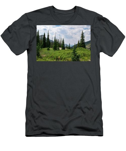 Trail To Gilpin Lake Men's T-Shirt (Athletic Fit)