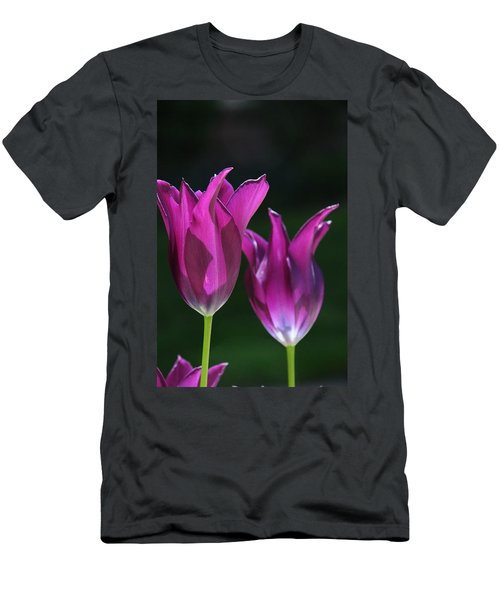 Translucent Tulips Men's T-Shirt (Athletic Fit)