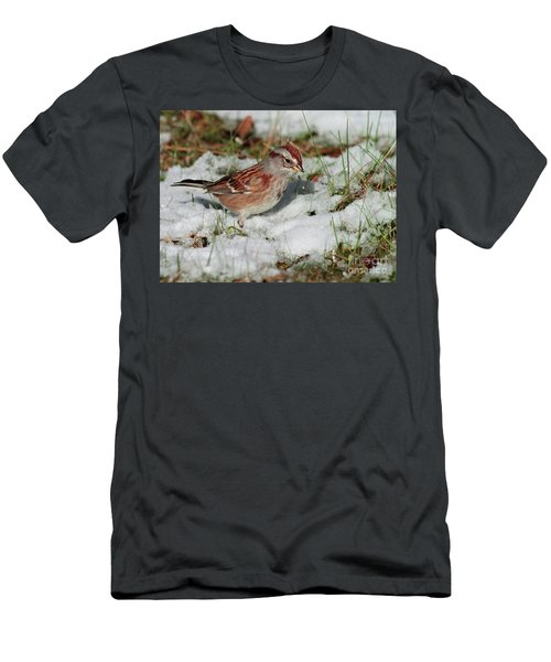Tree Sparrow In Snow Men's T-Shirt (Athletic Fit)