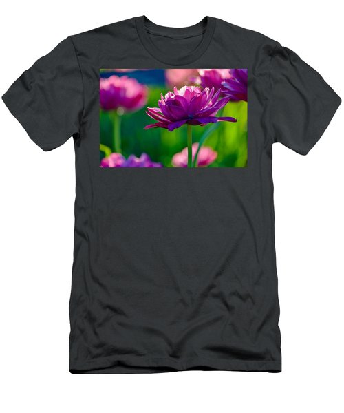 Tulips In Bloom Men's T-Shirt (Athletic Fit)