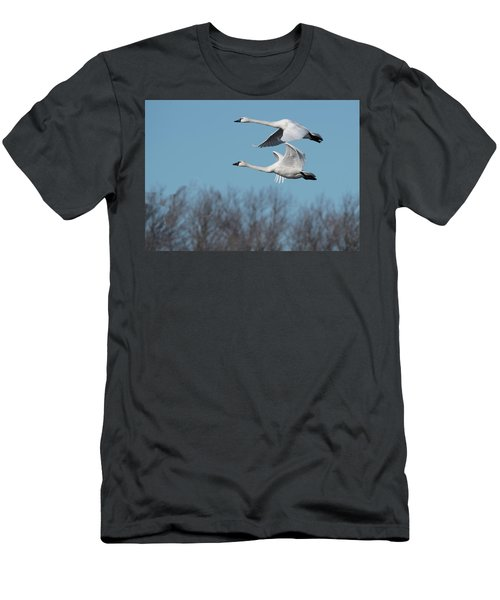 Tundra Swan Duo Men's T-Shirt (Athletic Fit)