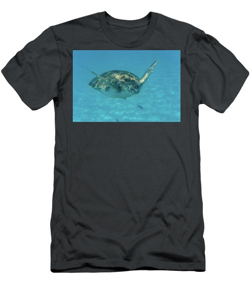 Turtle Approaching Men's T-Shirt (Athletic Fit)