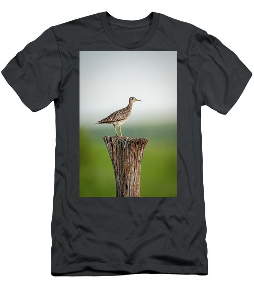 Men's T-Shirt (Athletic Fit) featuring the photograph Upland Sandpiper On Fence Post by Jeff Phillippi