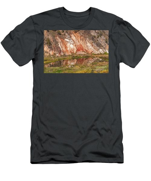 Vibrant Reflections On A Calm Pond Men's T-Shirt (Athletic Fit)