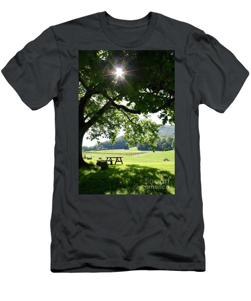 Vineyard In Georgia Men's T-Shirt (Athletic Fit)