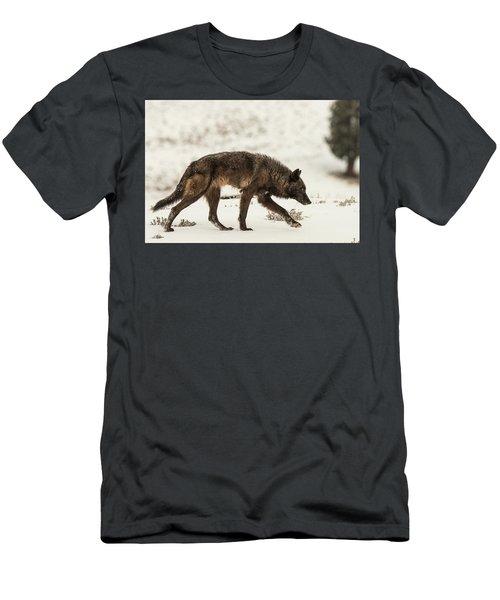 W13 Men's T-Shirt (Athletic Fit)
