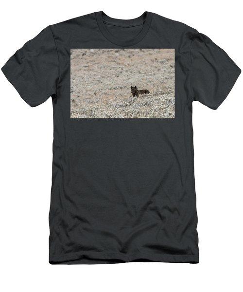W50 Men's T-Shirt (Athletic Fit)
